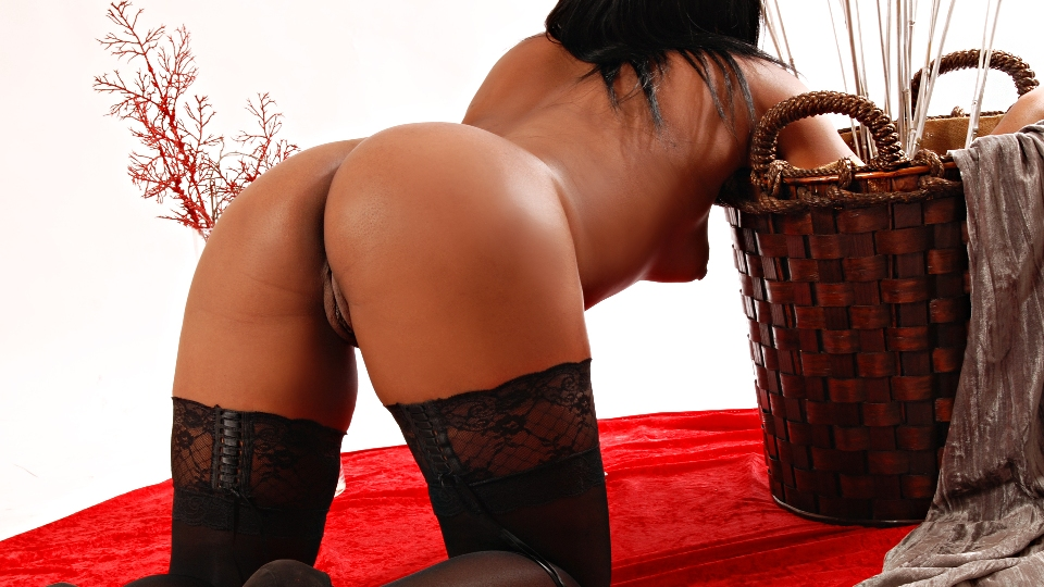 escort diana Chaves luxo